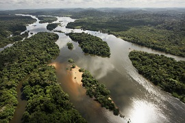 Area-de-Protecao-Ambiental-triunfo-do-xingu-270
