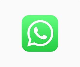 WhatsApp Logo 270