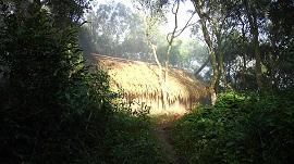 aldeia chapeco 270