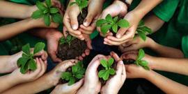 alunos-meio-ambiente