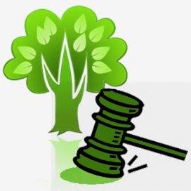 codigo florestal inconstitucionalidade