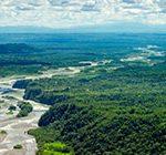 O Código Florestal após o julgamento do STF