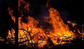 incendio-fazenda-270