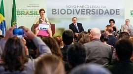 marco biodiversidade 270