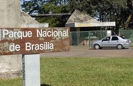 parque nacional de Brasilia-270