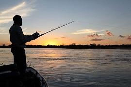 pesca-crime-ambiental-270