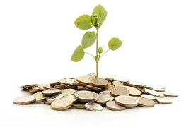 sustentabilidade-dinheiro-270