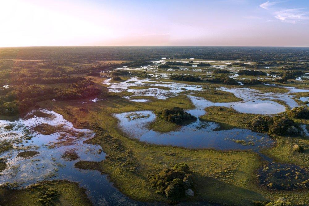 6-pantanal2.jpg